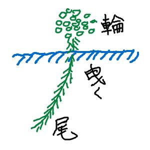 Cocolog_oekaki_2012_01_09_23_42